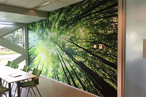 Fotowanden Zwolle
