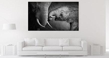 Let's talk about the elephant in the room 🐘 Een prachtige toevoeging in jouw woning! Wil jij deze prachtige afbeelding ook in jouw woning? Stuur ons een DM! ✉️