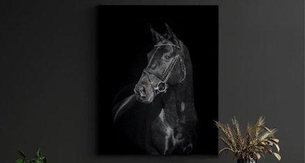 Dark horse 🐴 Deze week staat bij ons in het thema van dieren! Welk dier zou jij graag op plexiglas in jouw woning willen? Donkere afbeeldingen met een zwarte achtergrond zorgen voor een prachtige glas ons jouw fotodecoratie!